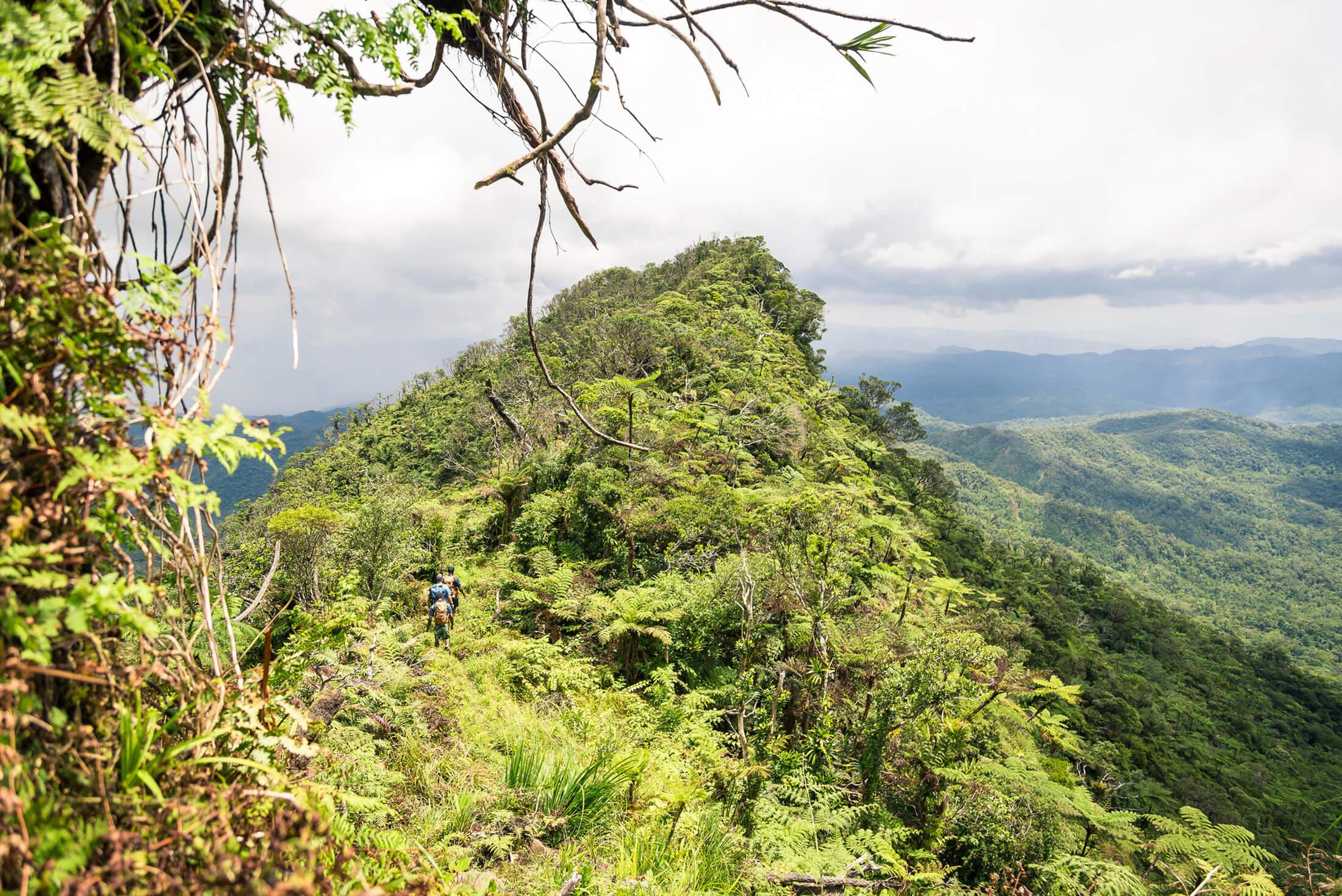 Fiji Adventure 3