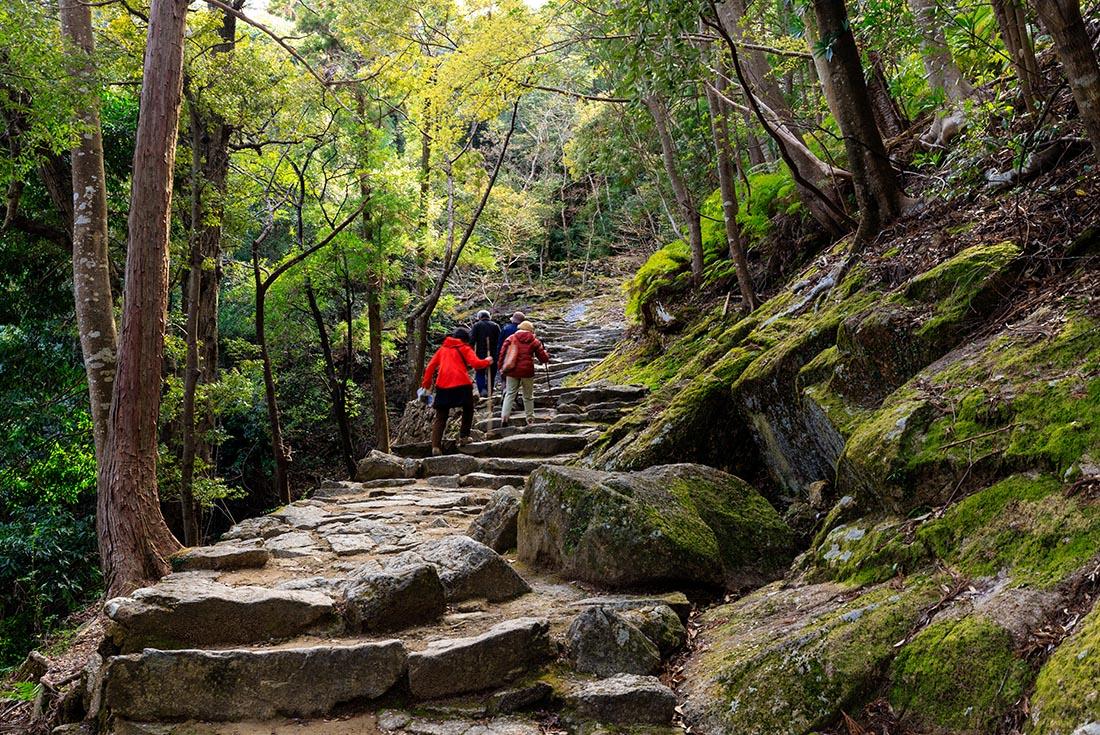 Japan: Koya-san & Kumano Kodo Trek 2