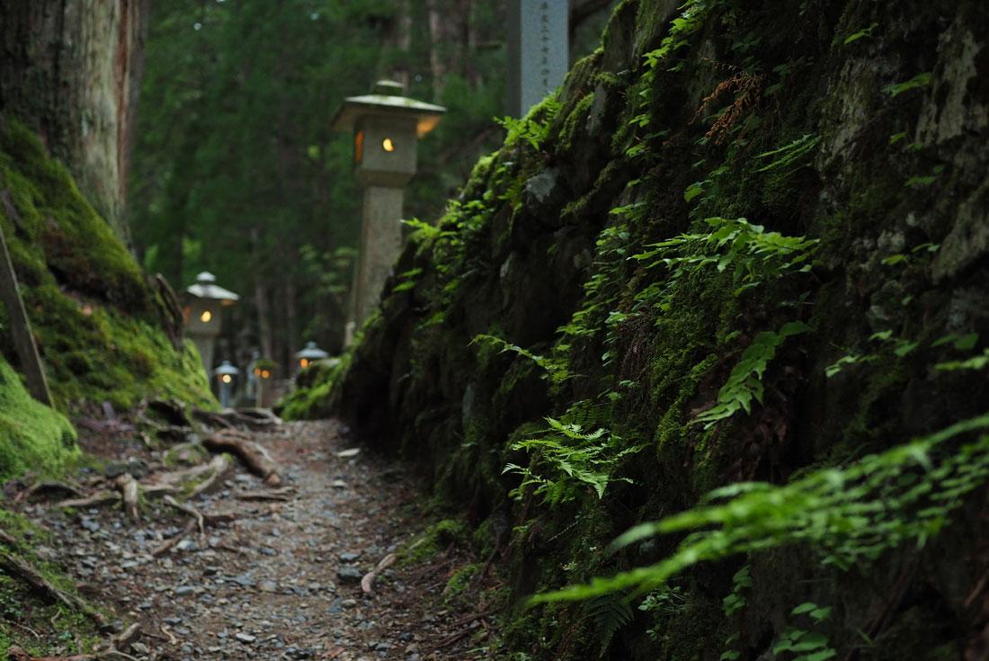 Japan: Koya-san & Kumano Kodo Trek 4