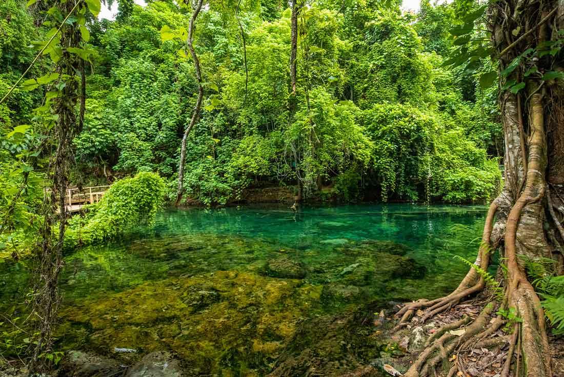 Vanuatu Adventure 2