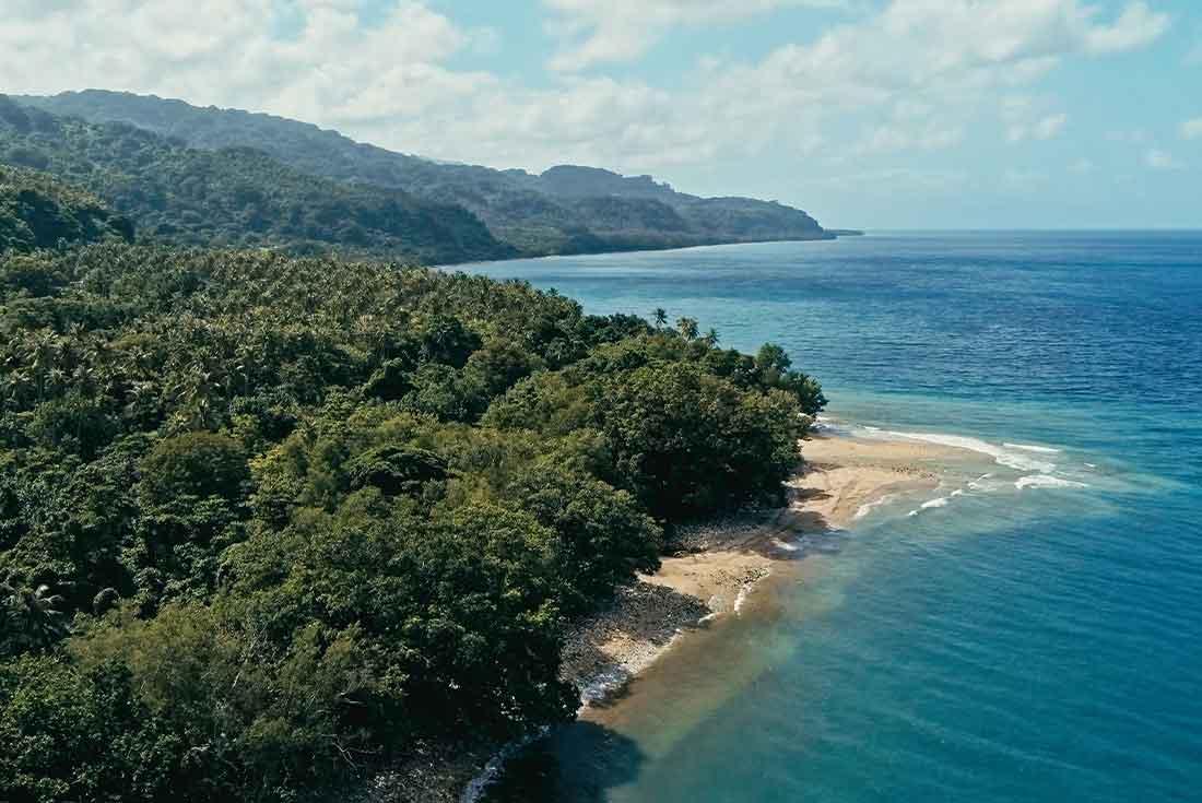Vanuatu Land Diving Festival 4