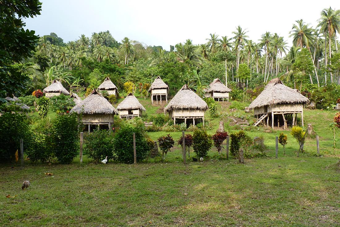 Vanuatu Land Diving Festival 2