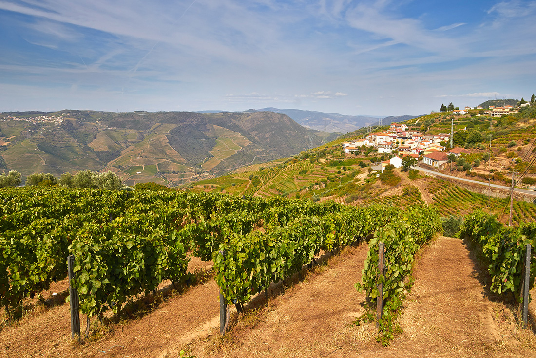 Portugal Retreat: Porto & the Douro Valley 1