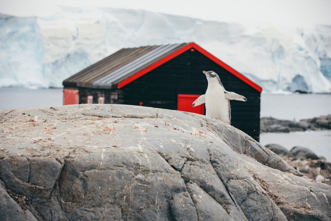 South Georgia and Antarctic Peninsula from Ushuaia 2