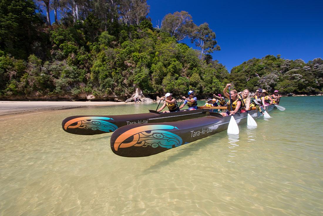 Hike Abel Tasman & West Coast Rainforests 3