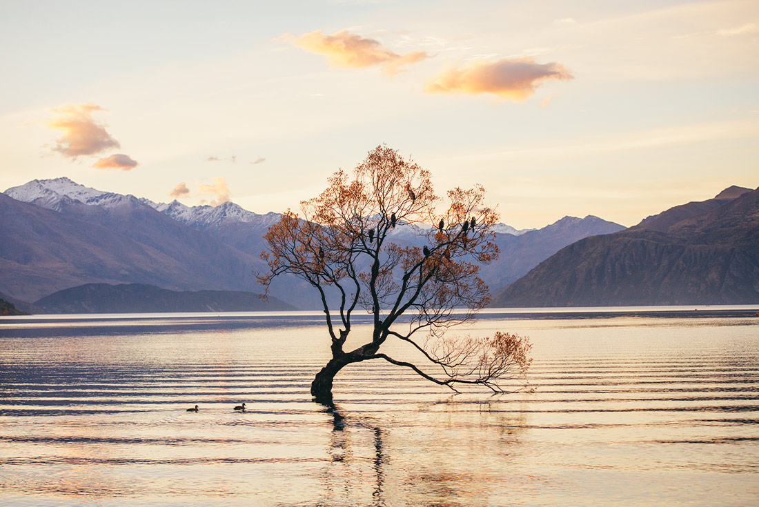 New Zealand South Island Family Holiday 3