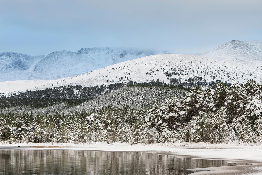Scotland: Cairngorms Winter Walking 3