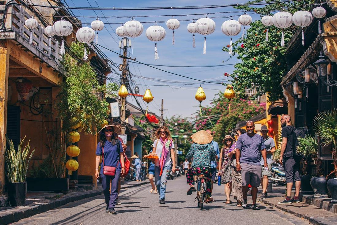 Premium Vietnam in Depth 1