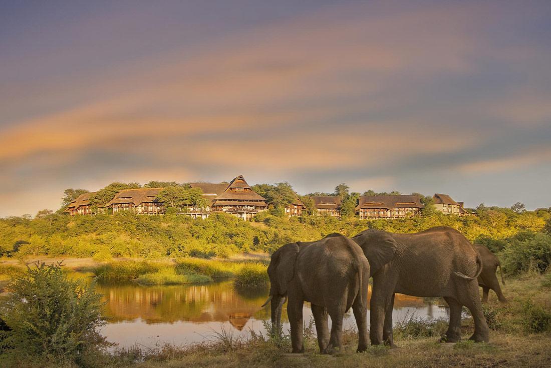 Premium Kenya & Southern Africa Highlights 2