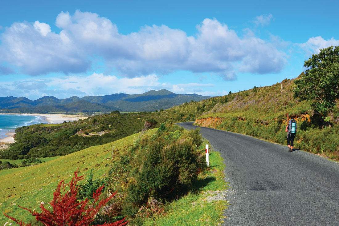 Great Barrier Island Escape 2