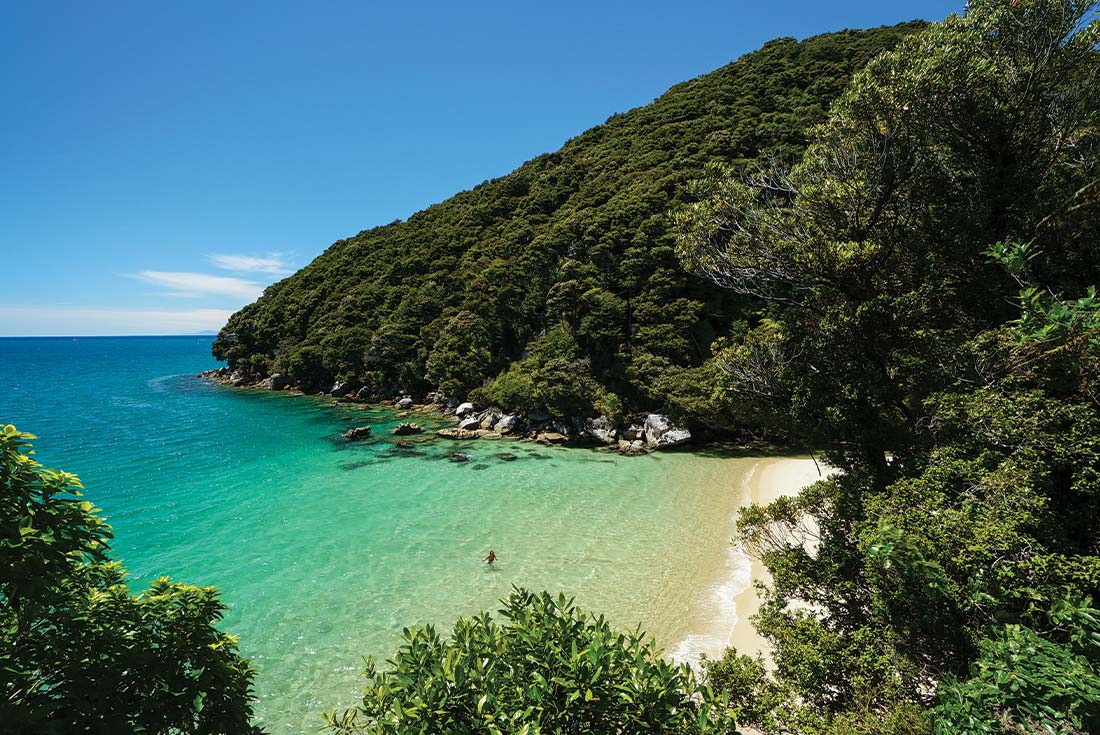 Great Barrier Island Escape 4
