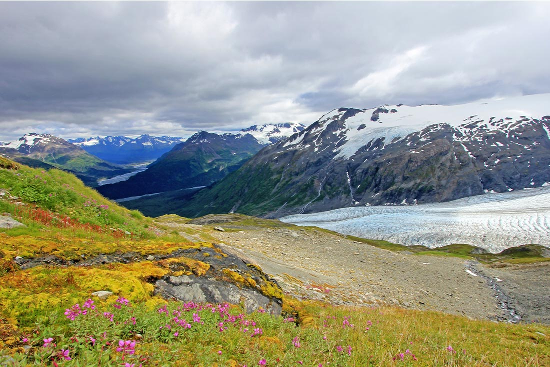 Alaska Summer Family Holiday 4