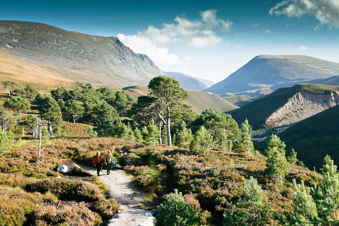 Walk the Cairngorms in Summer 3
