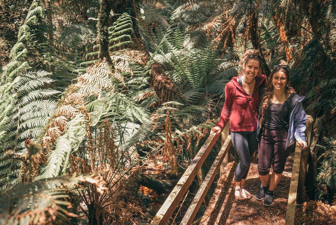 Tasmania Tarkine & Cradle Mountain Explorer 2