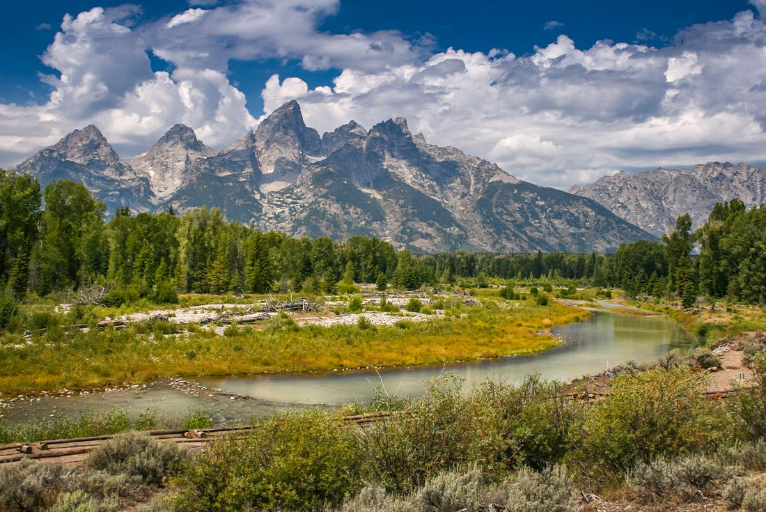 Yellowstone and Grand Teton Family Holiday