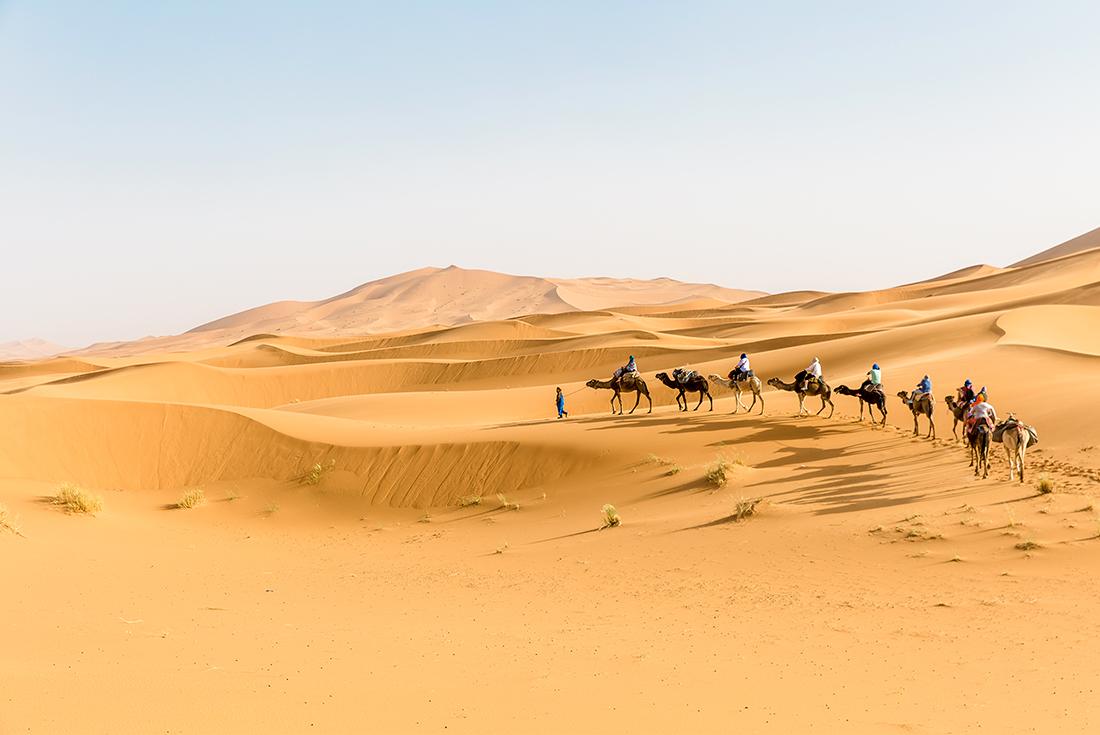 Premium Morocco Explorer 1