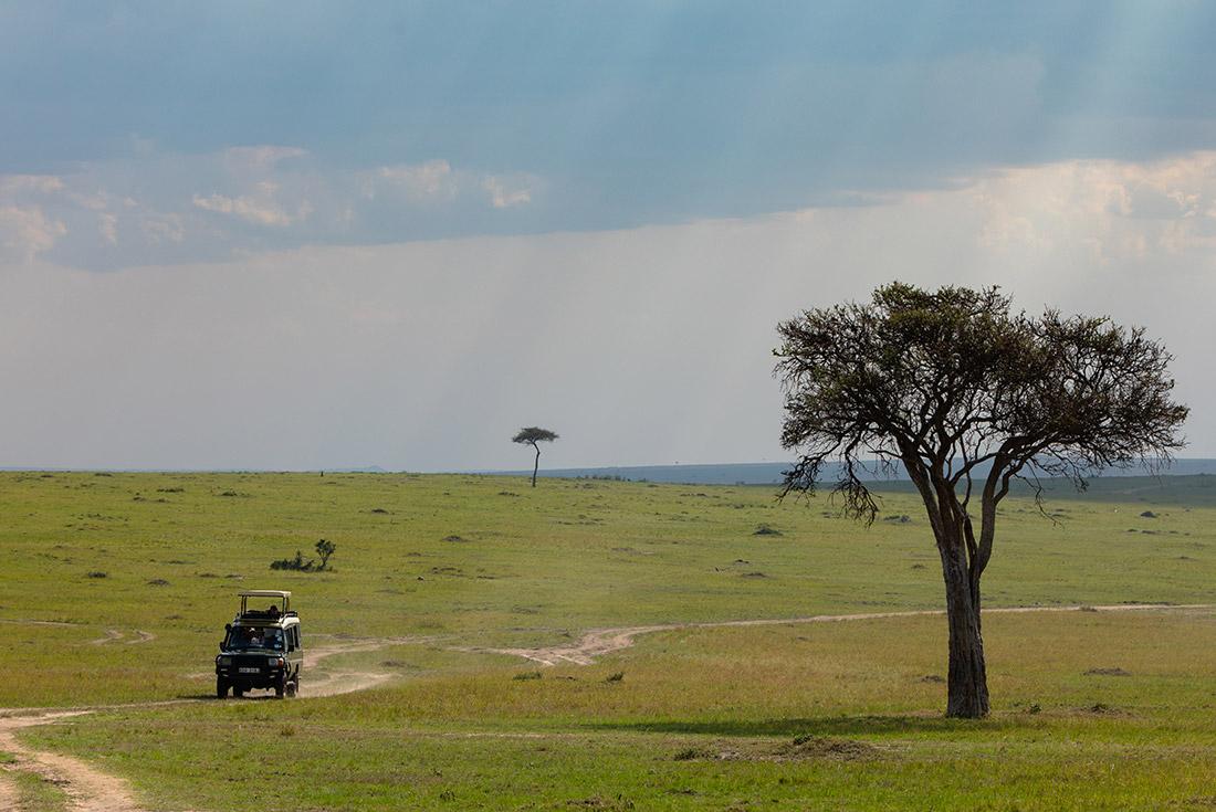 Premium Kenya & Southern Africa In Depth 1