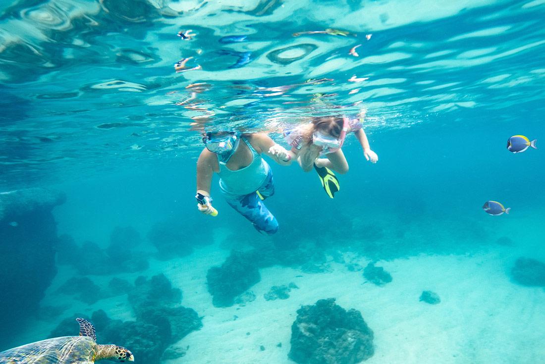 Queensland Coast & Islands Adventure 1
