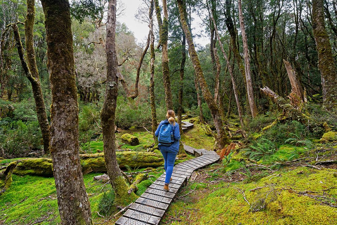 Walk Cradle Mountain National Park 3