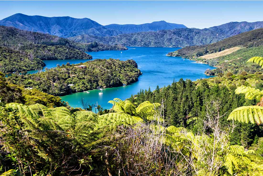 Walk the Queen Charlotte Track 1