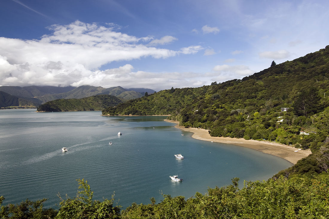 Walk the Queen Charlotte Track 4