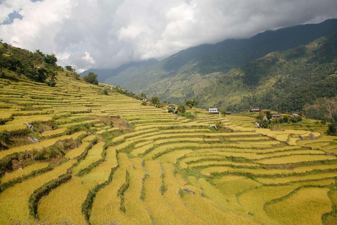 Kathmandu Valley Trek 2