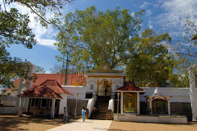 Classic Sri Lanka - Independent Journey 1