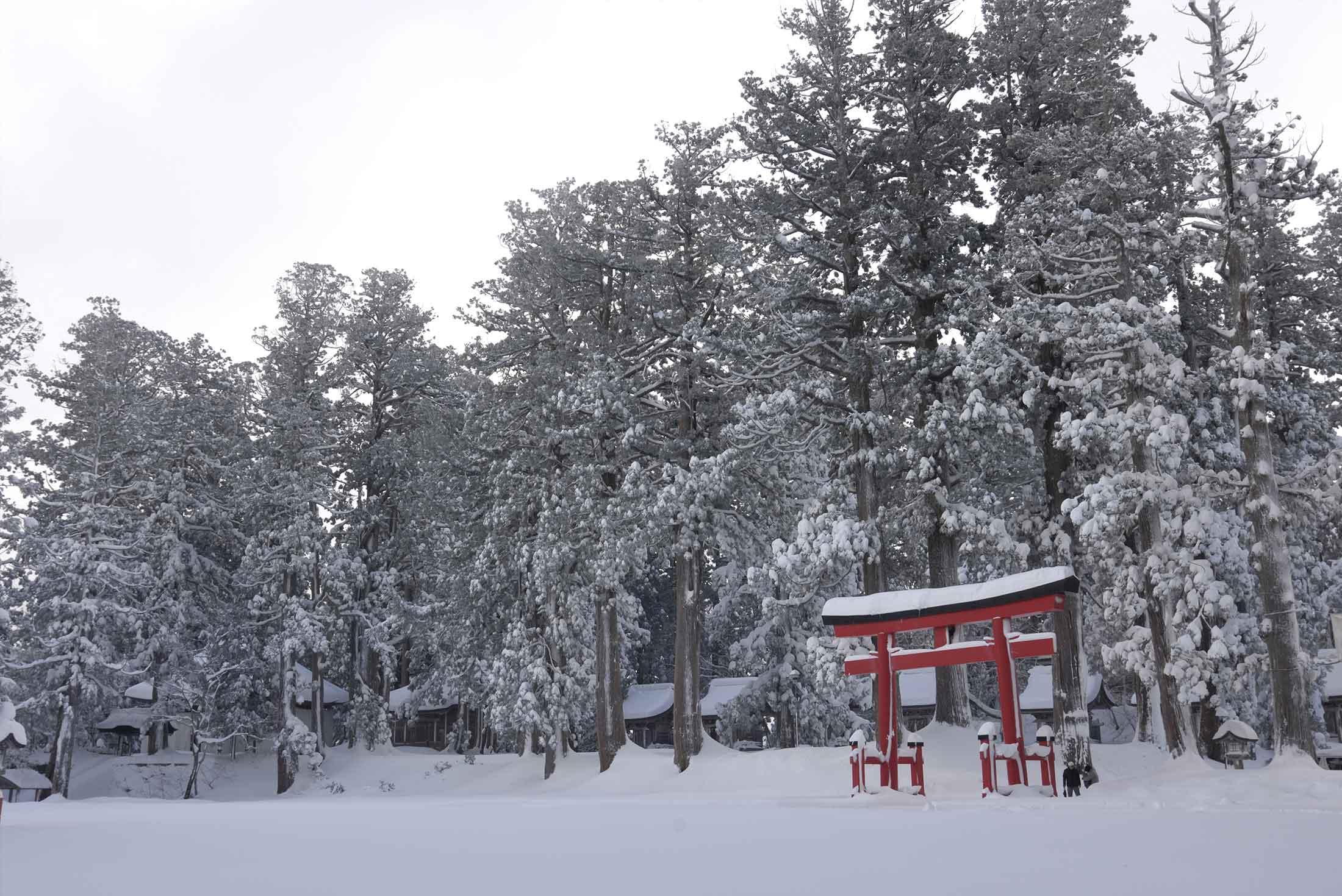 Japan Winter Explorer 1