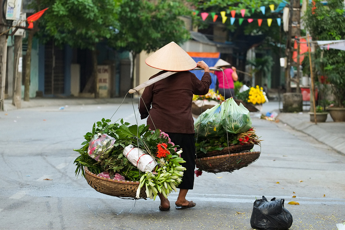 North Vietnam Coastal Cruising - Hanoi to Danang 4