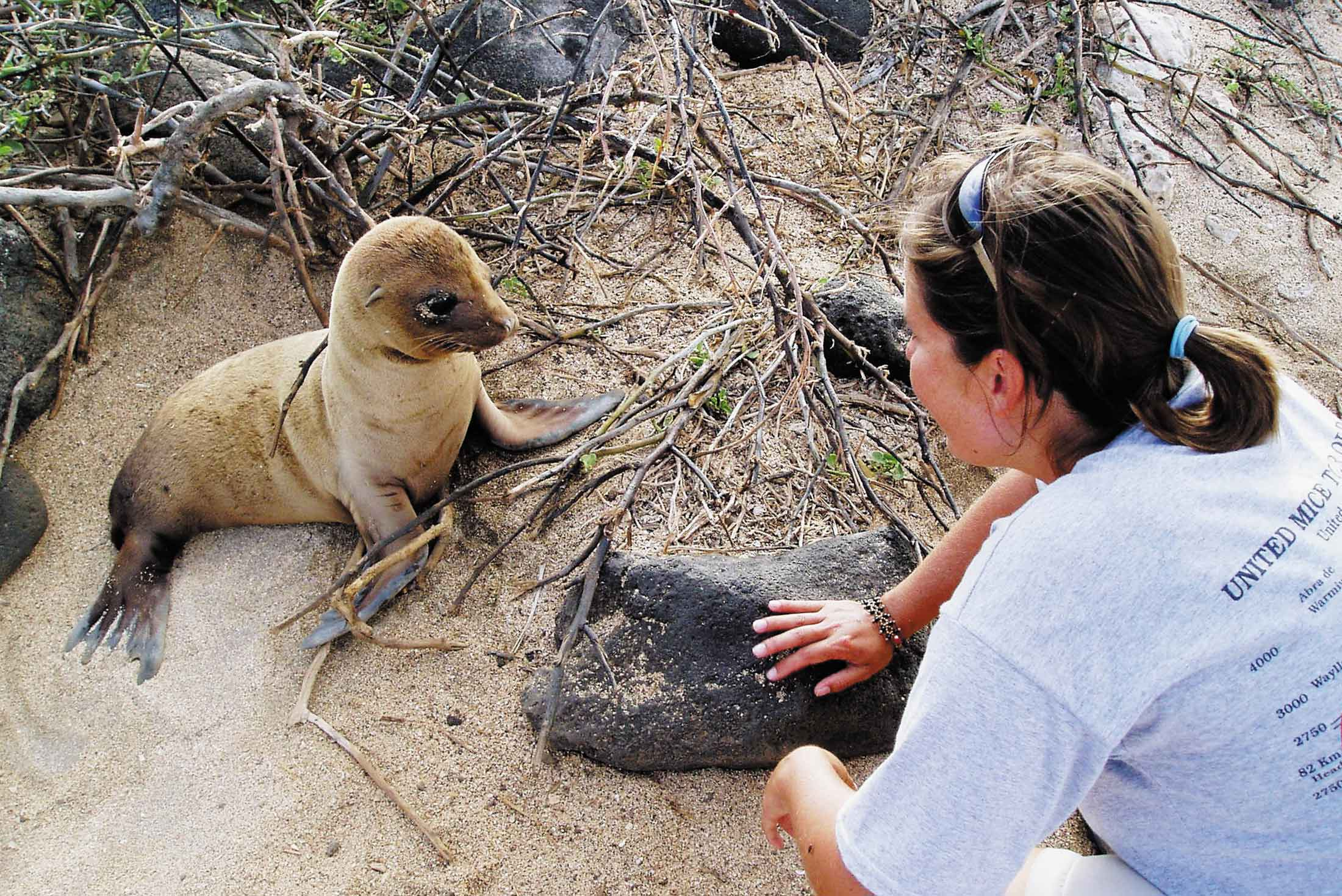 Galapagos Voyager - Central Islands  (Grand Queen Beatriz) 1