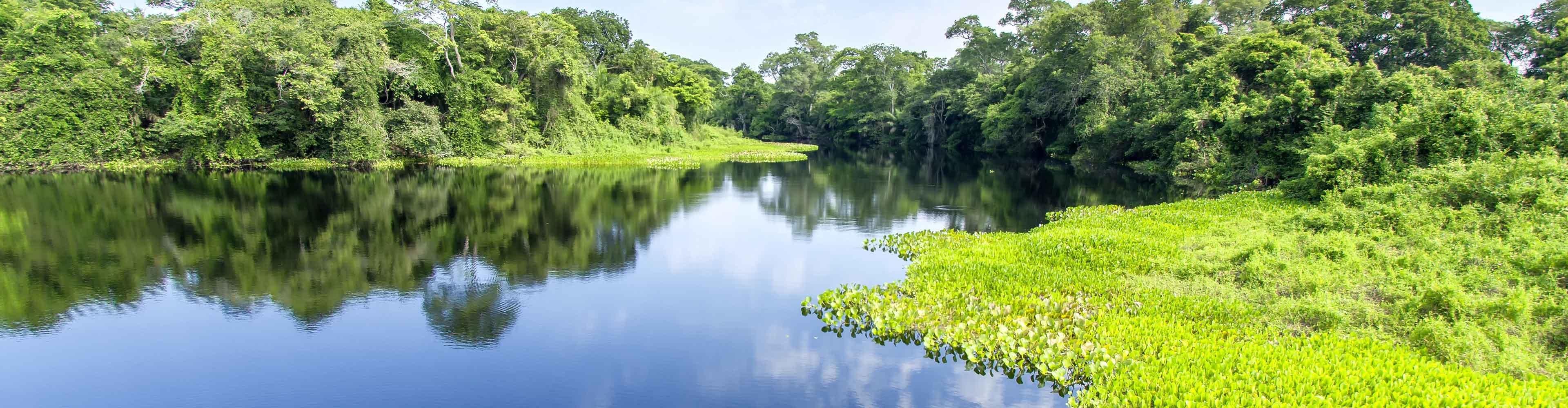Brazil Pantanal Experience – Independent