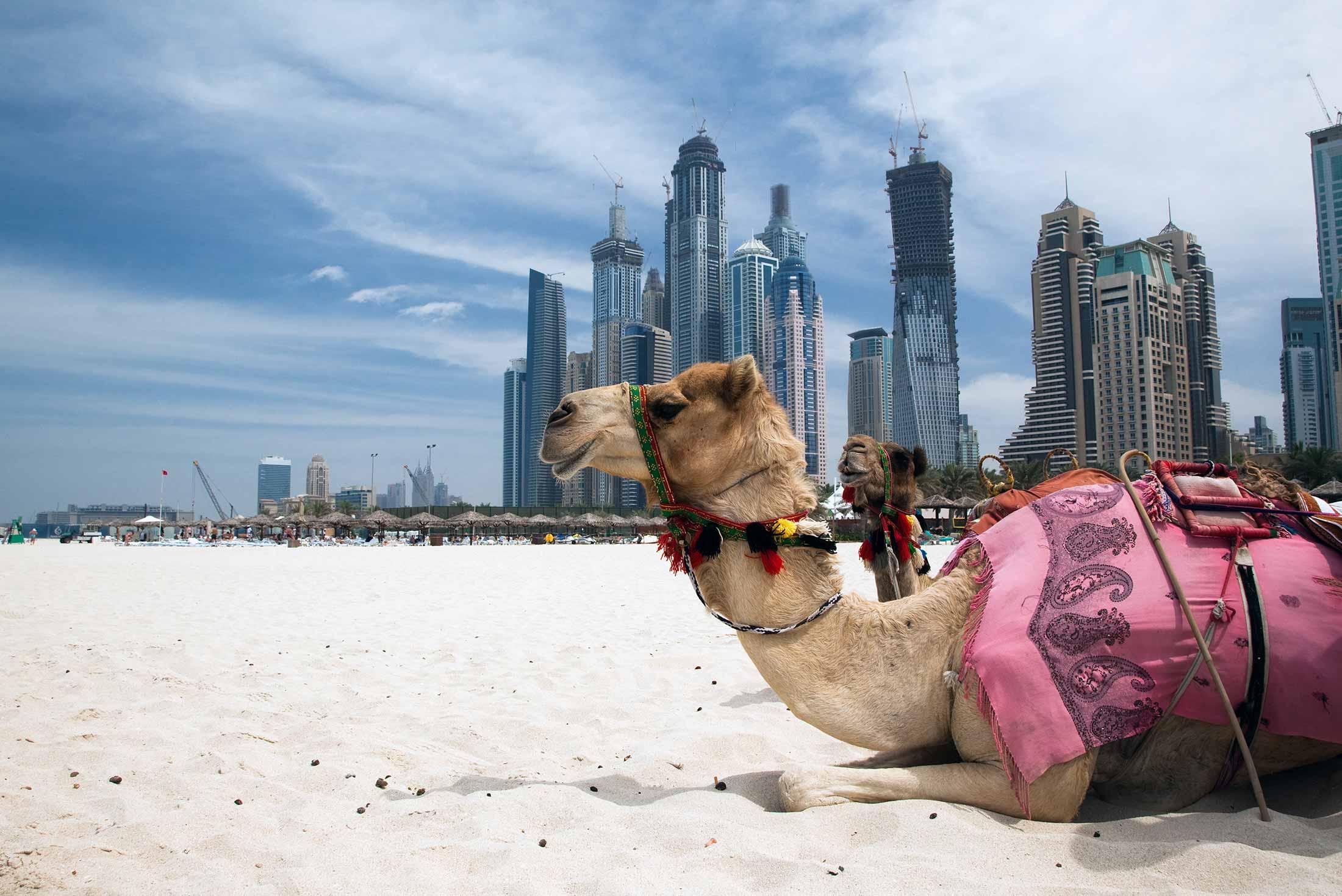 Dubai Experience - Independent 1