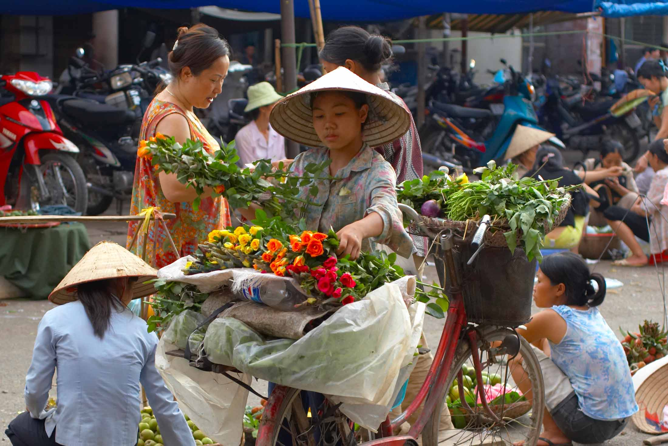 Indochina Insights 1