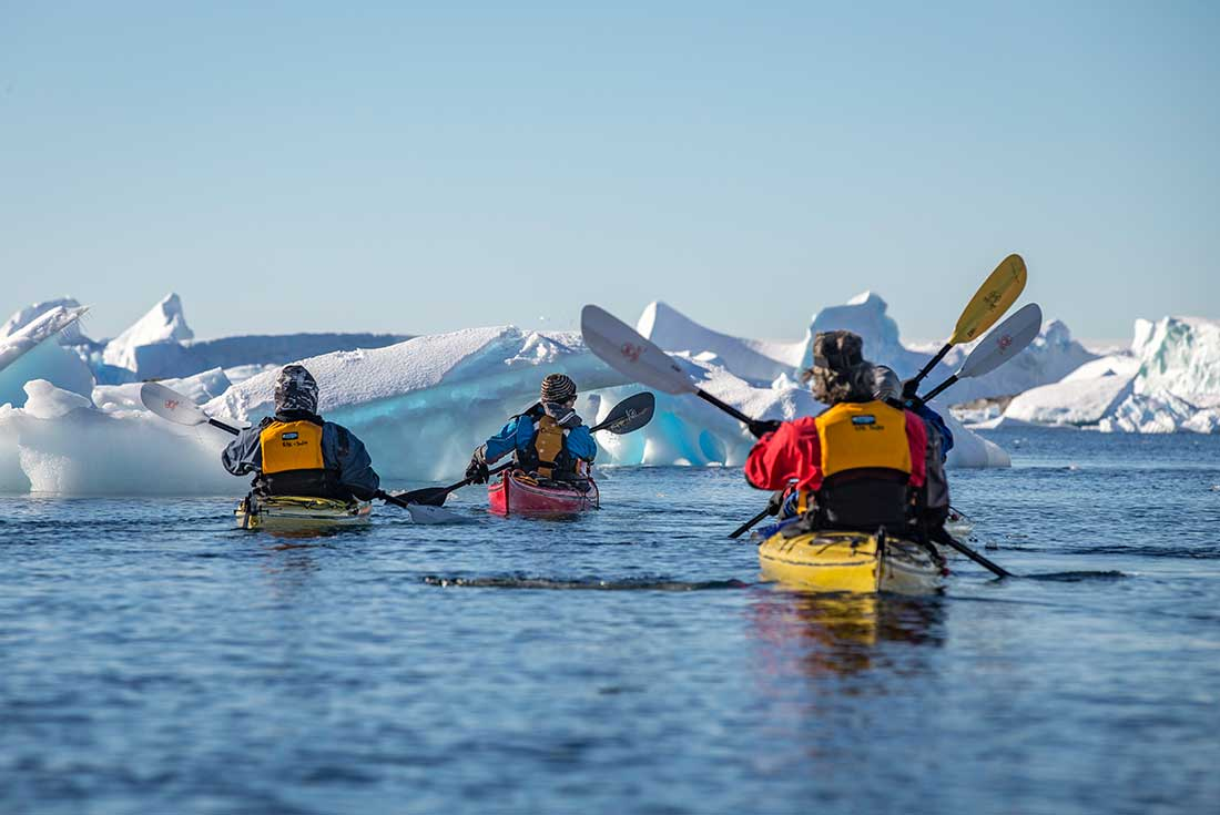 Antarctica, South Georgia and Falklands Explorer 4