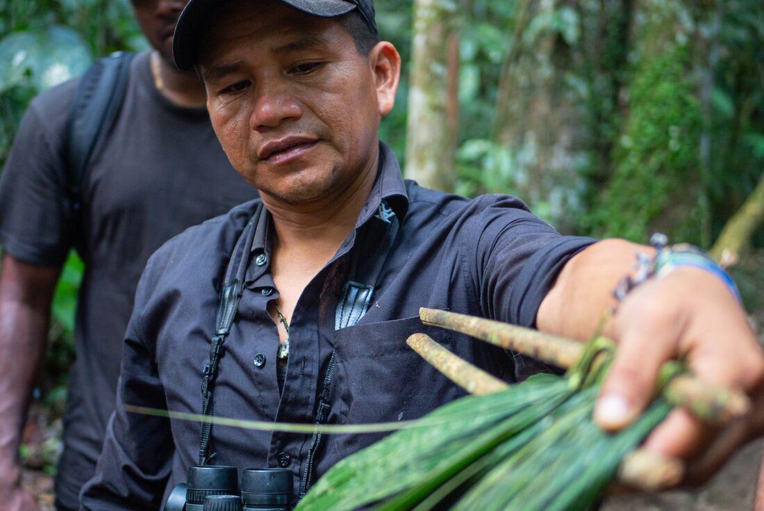 Peru: Amazon Jungle Experience – Independent 2