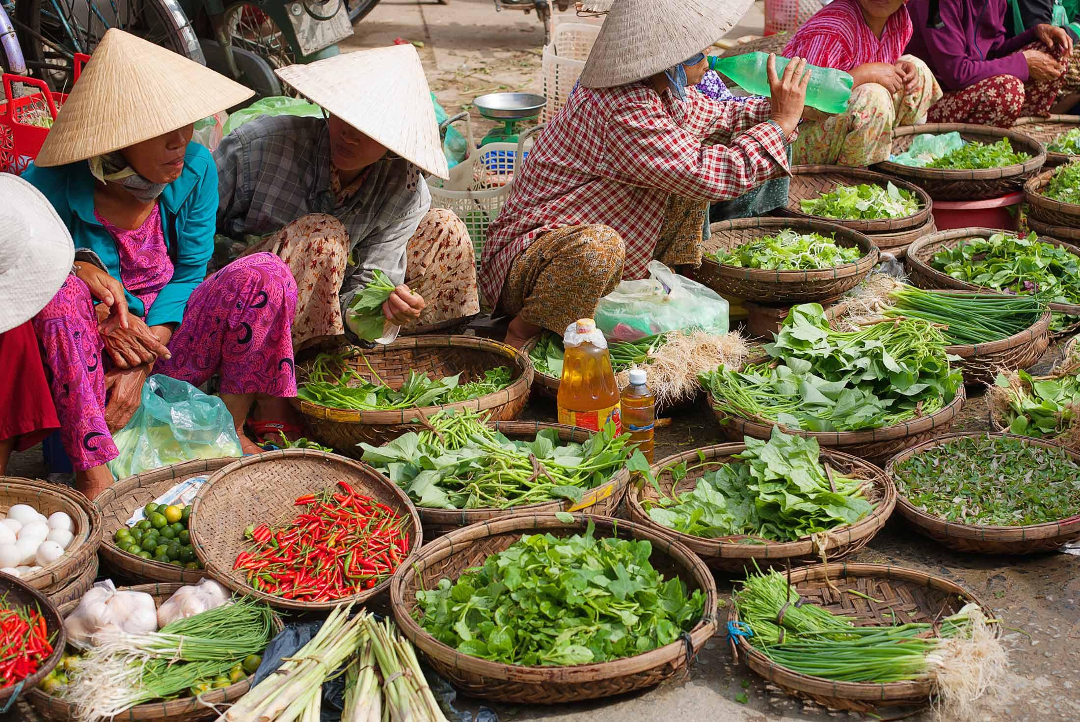 Cambodia & Vietnam In Depth 4