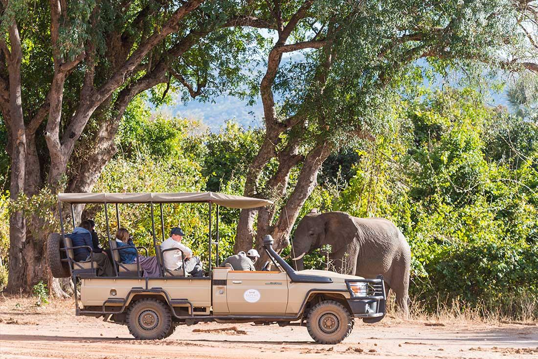 Lower Zambezi Experience: Independent 1