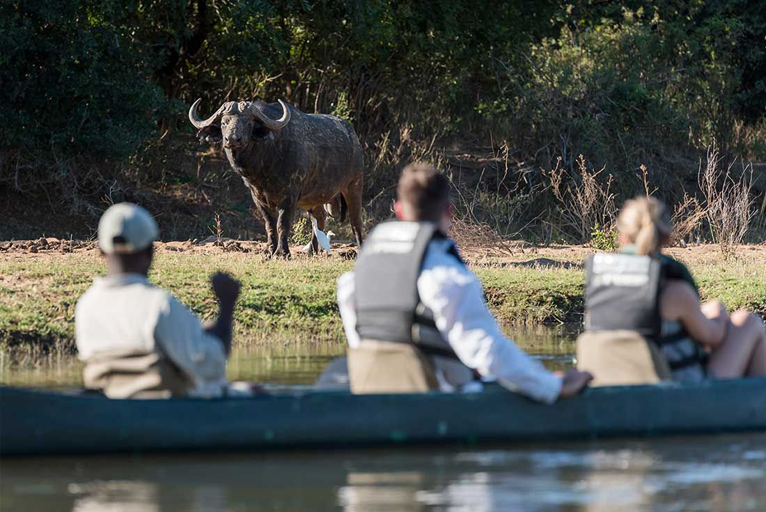 Lower Zambezi Experience: Independent 3