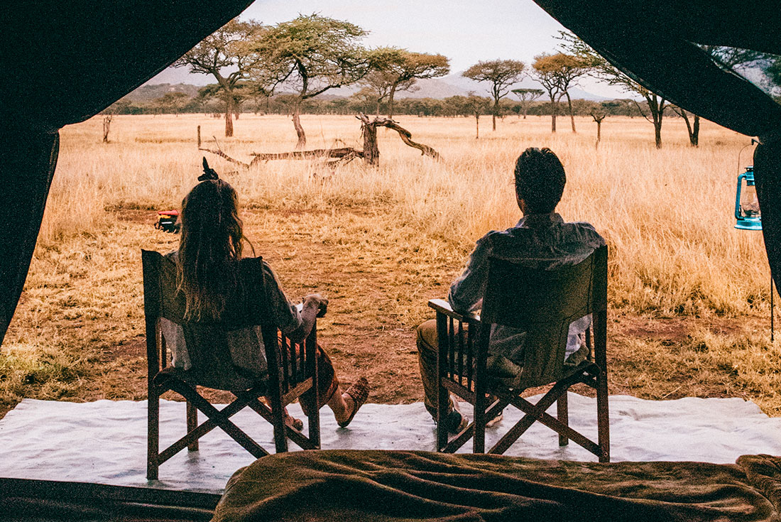 Serengeti & Silverbacks 4