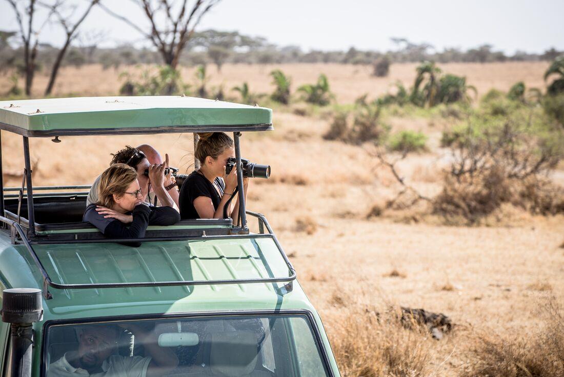 Serengeti & Silverbacks 2