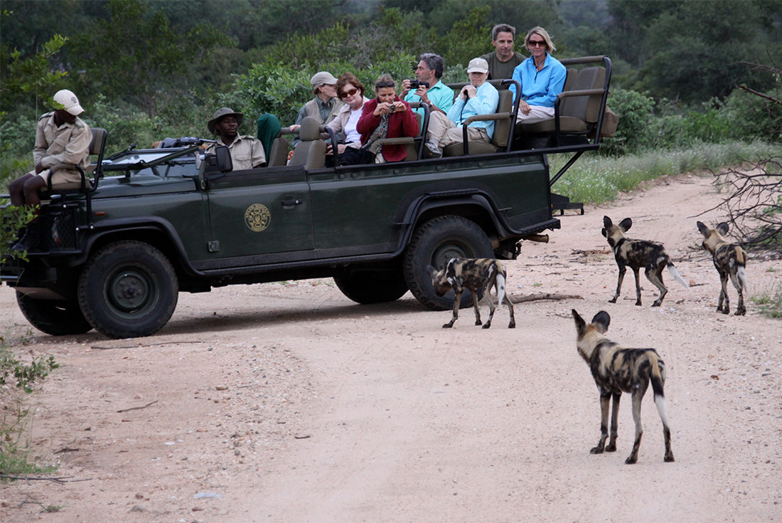 Southern Africa Experience 4