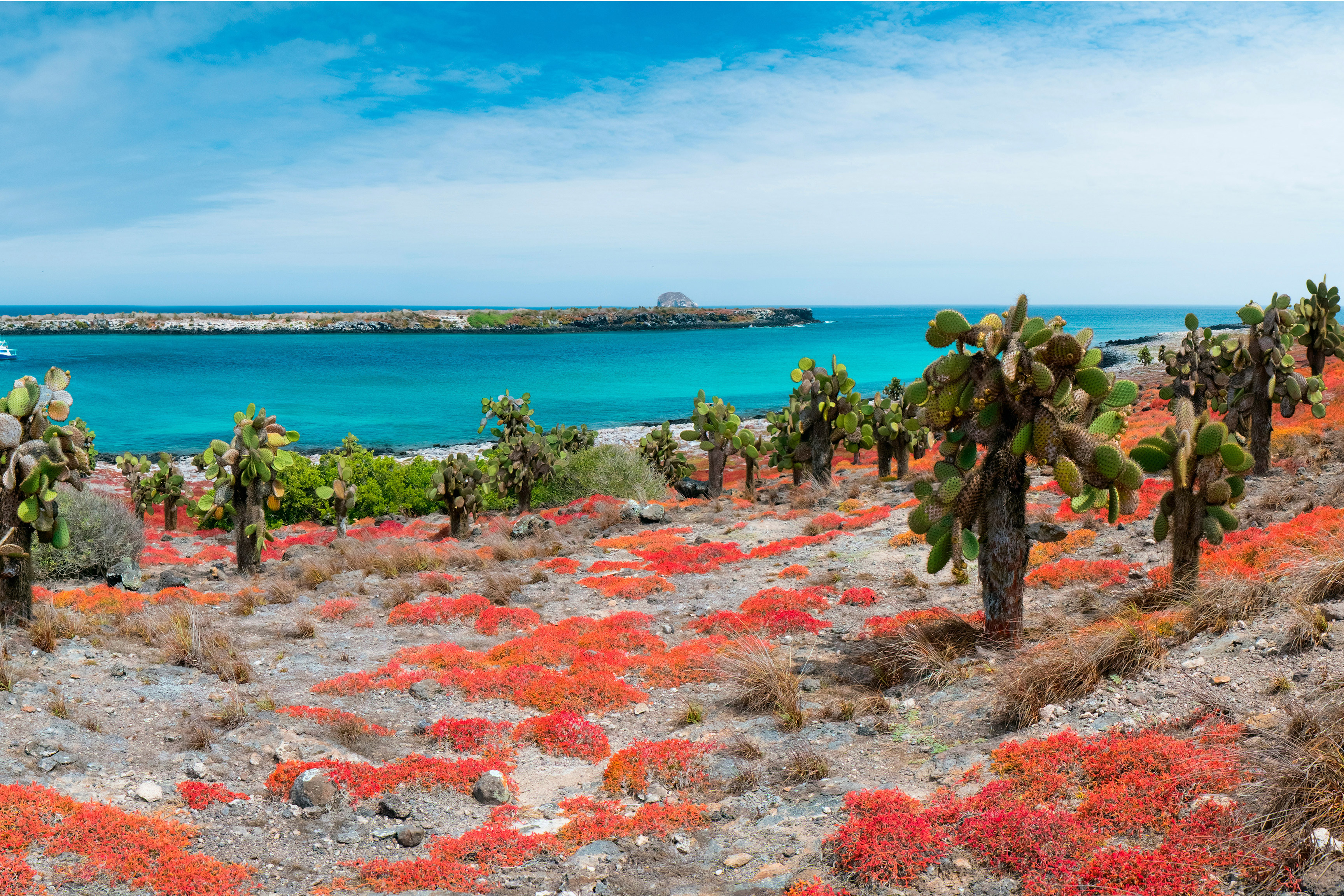Galapagos at a Glance: Southern Islands (Grand Daphne) 1