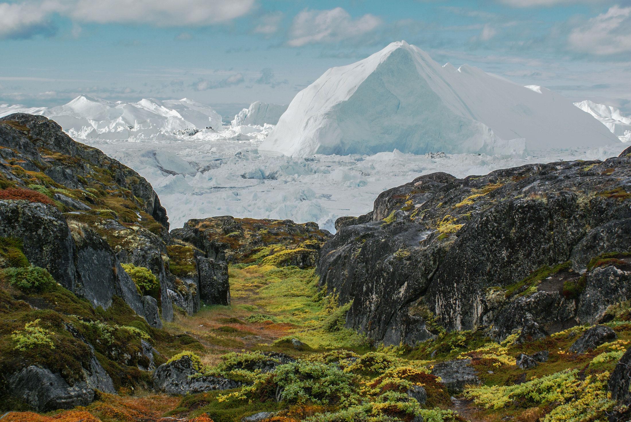 Spitsbergen, East Greenland and Iceland - Northbound 2